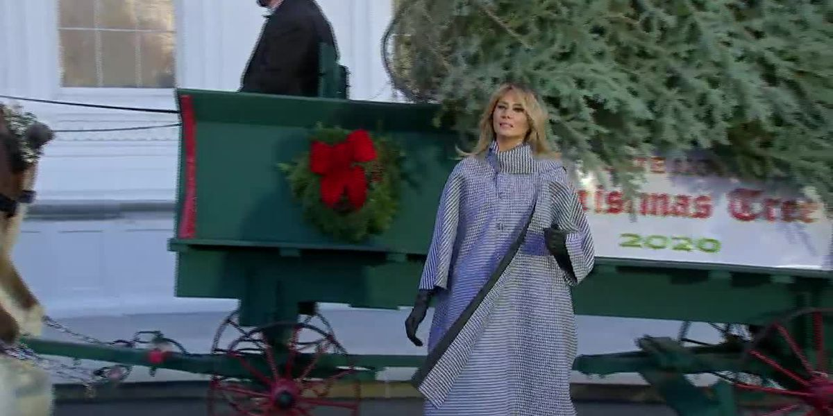 White House still planning holiday parties, despite warnings