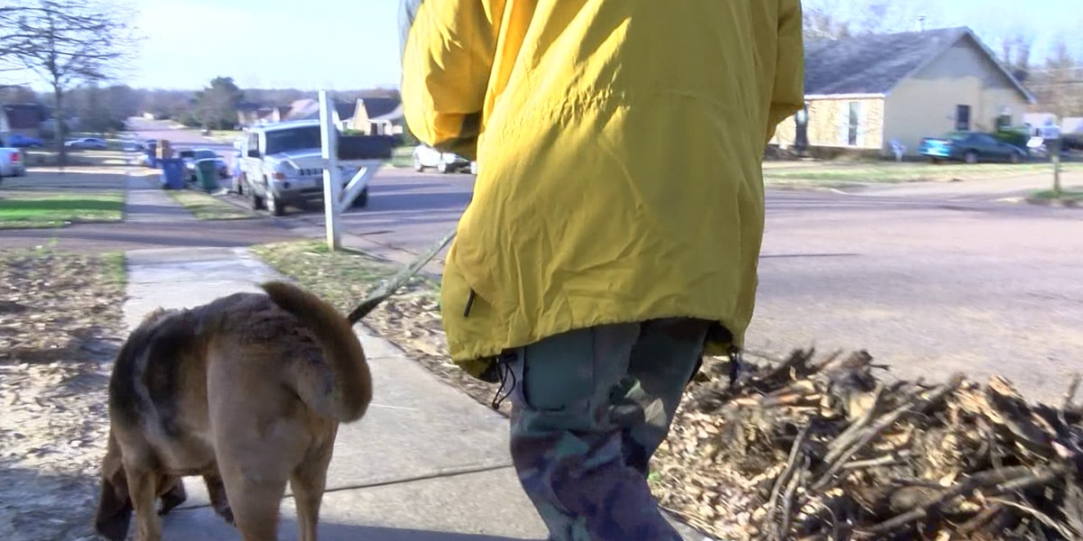 Volunteers, dogs help search for missing woman