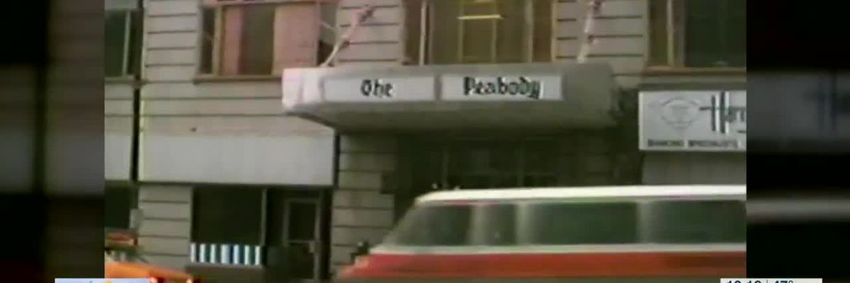 5 Star Stories: A look into the history of the Peabody Hotel in Downtown Memphis