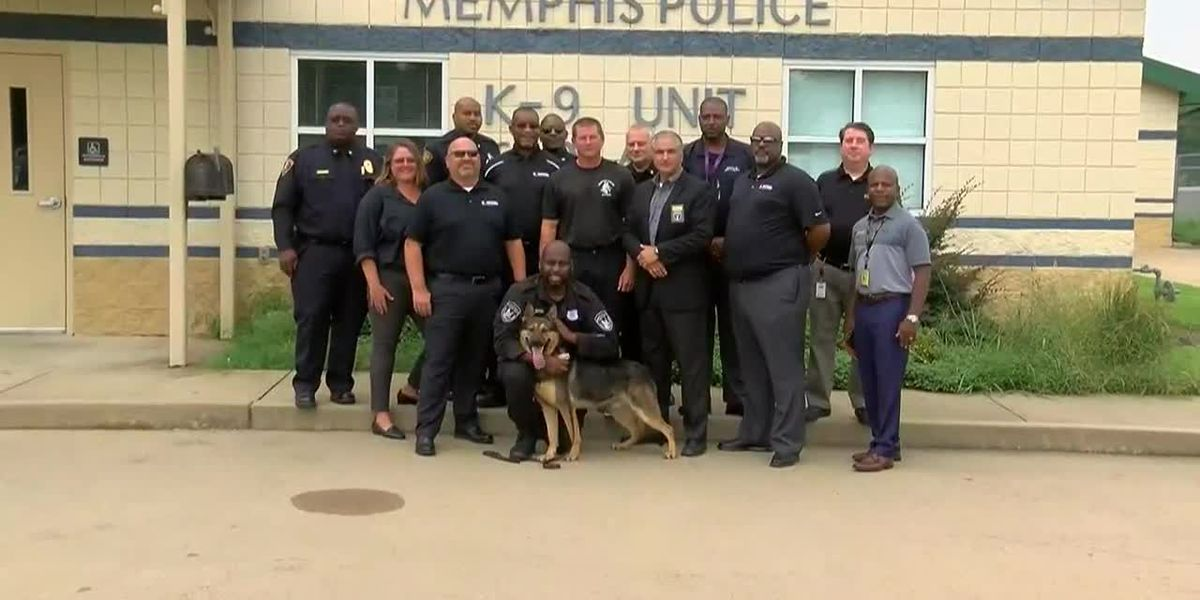 MPD receives donated police dog