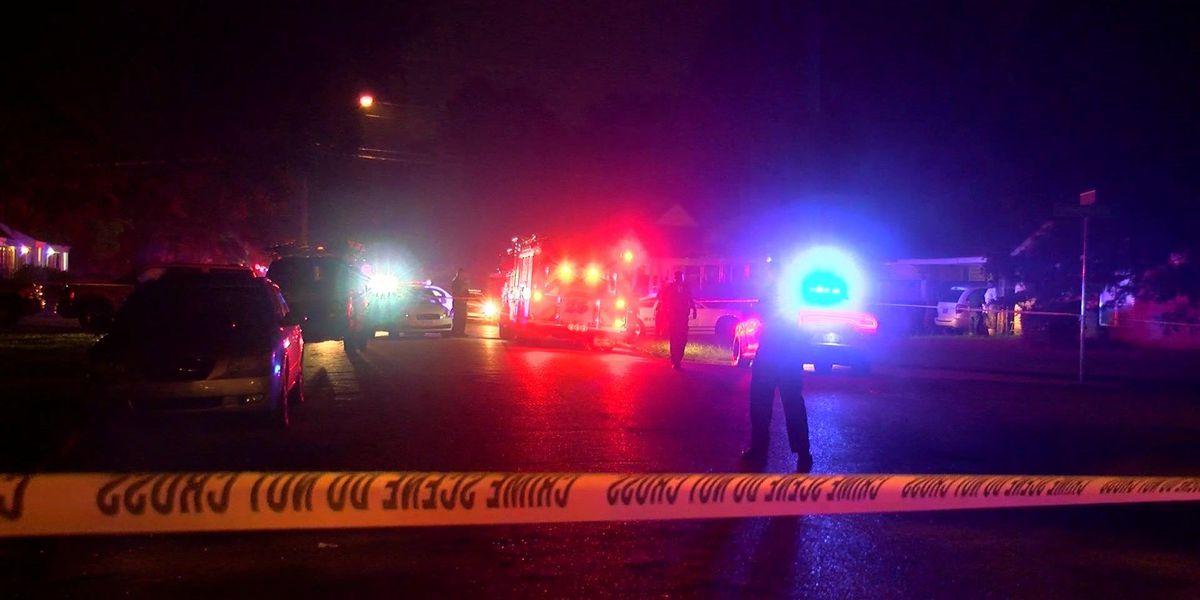 2 shot in Parkway Village overnight