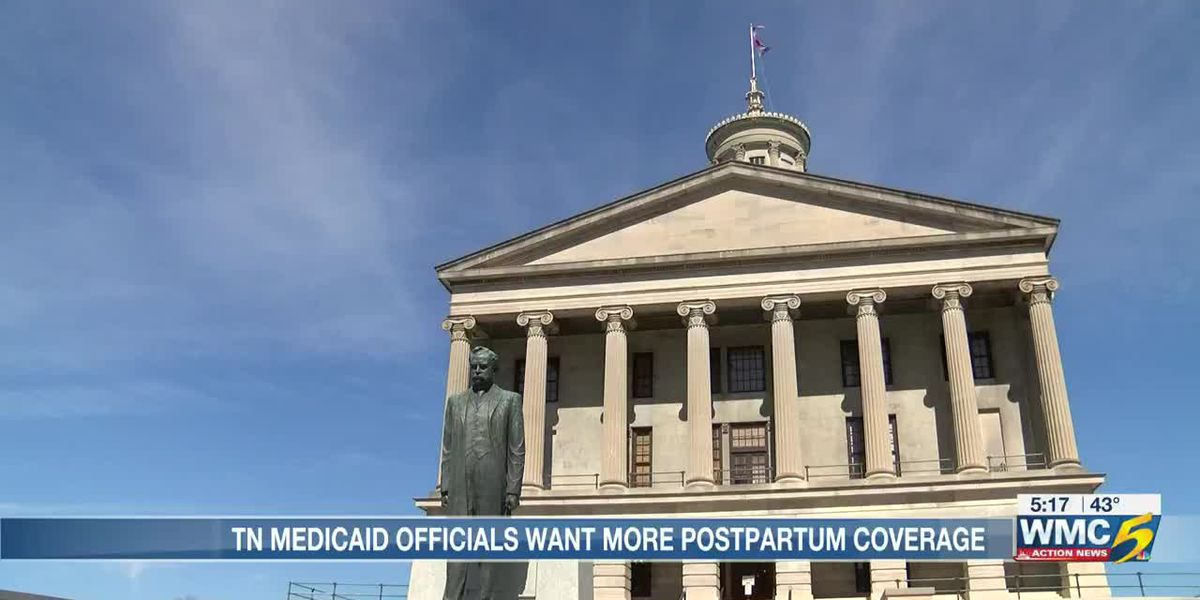 State officials push for expansion of postpartum health coverage