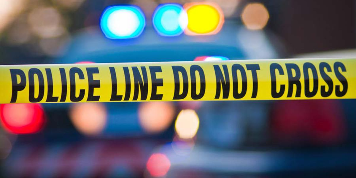 Police investigating murder-suicide of Selmer couple