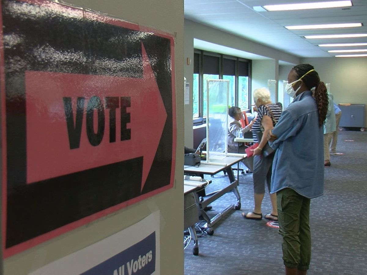Organizations urging people to vote early as Shelby Co. breaks voting records