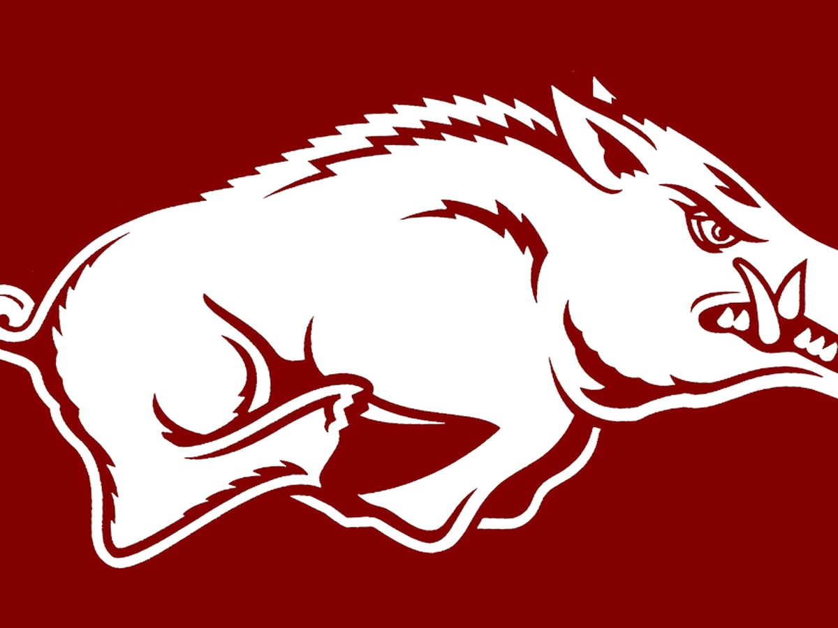 Arkansas loses big to no. 9 Auburn