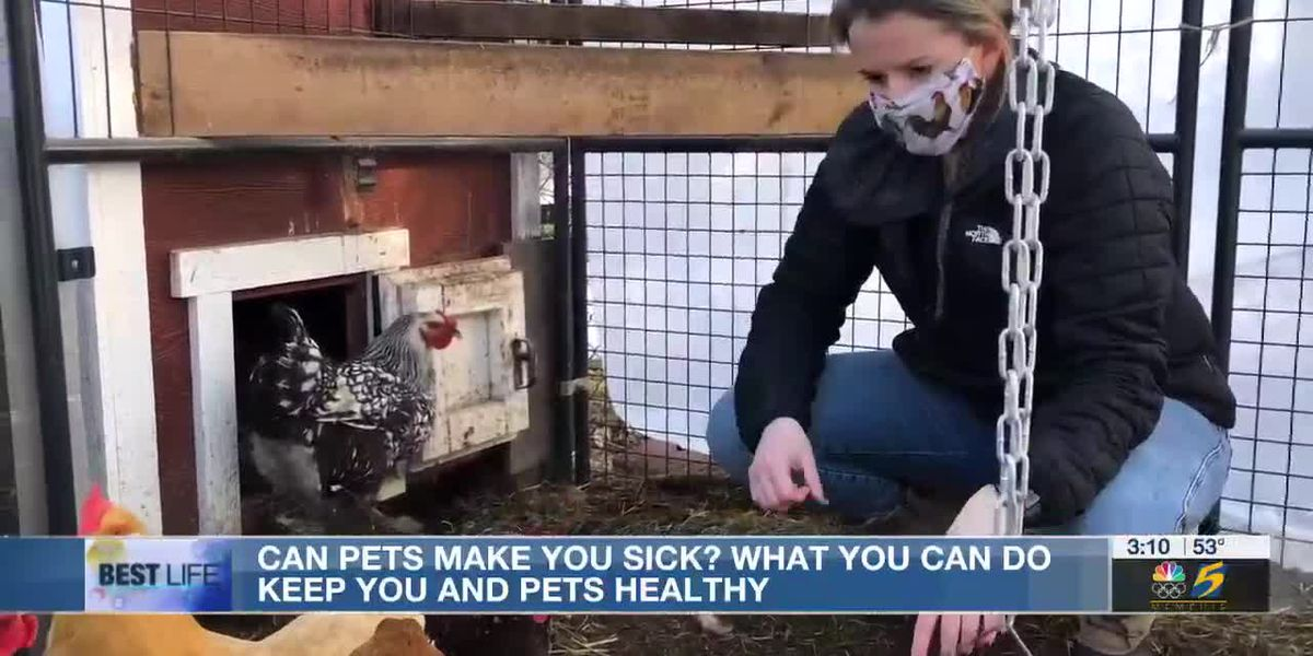 Bottom Line: Can your pets make you sick?