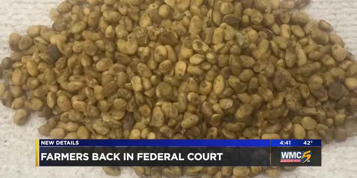 Black farmers who claim company sold them subpar seeds back in court