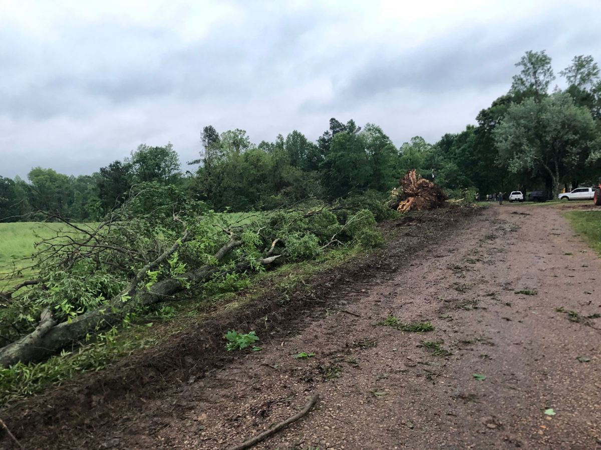 NWS to survey tornado damage in Tipton County