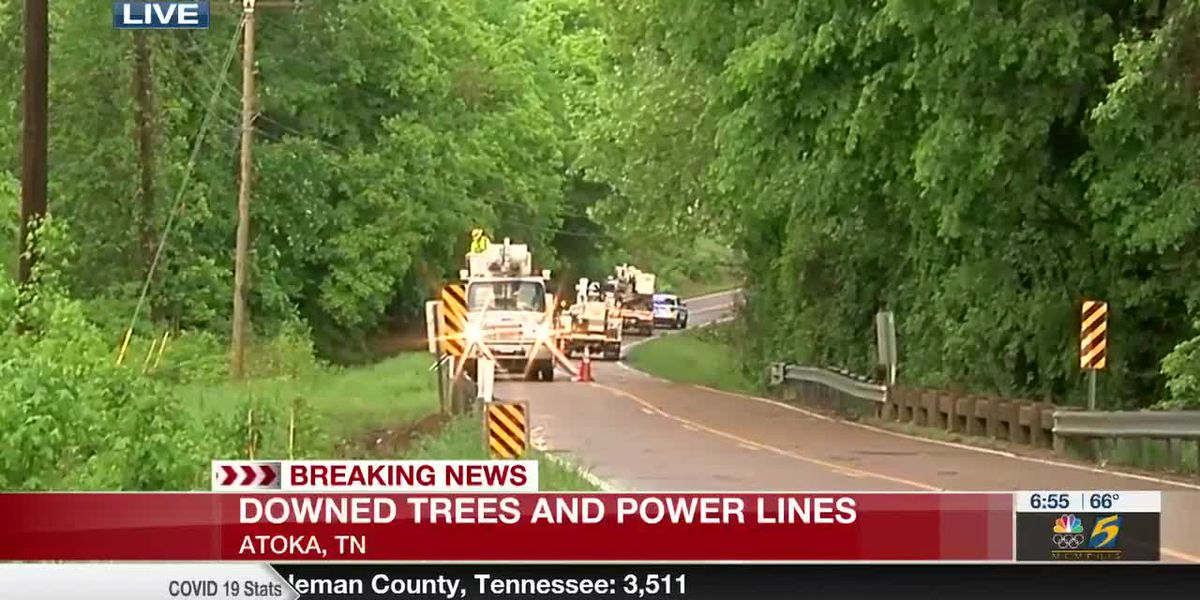 Downed trees and power lines in Atoka