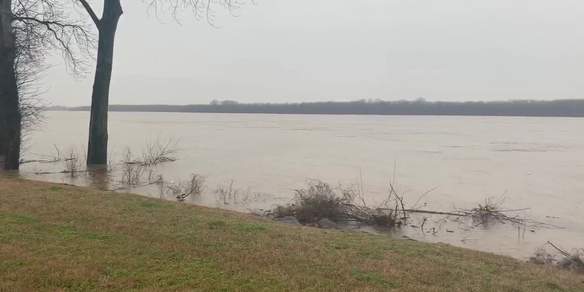 Mississippi River reaches near flood stage
