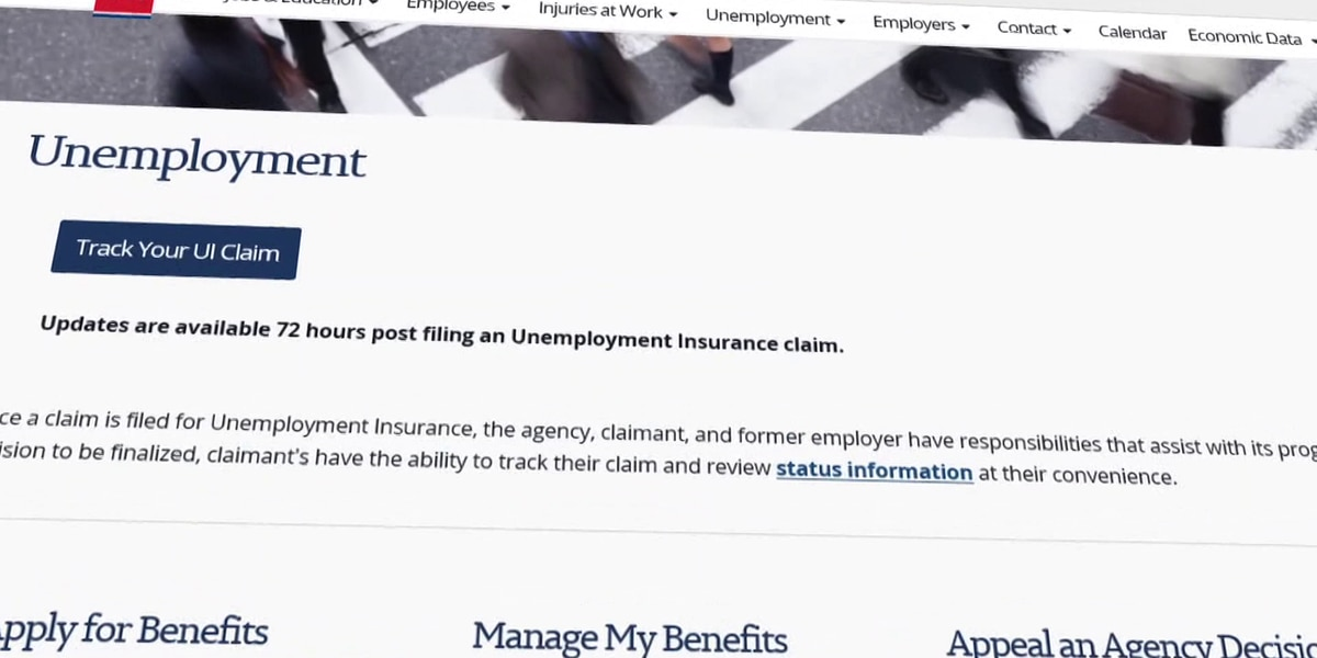 The Investigators: New unemployment filings are going down but will the decrease continue?