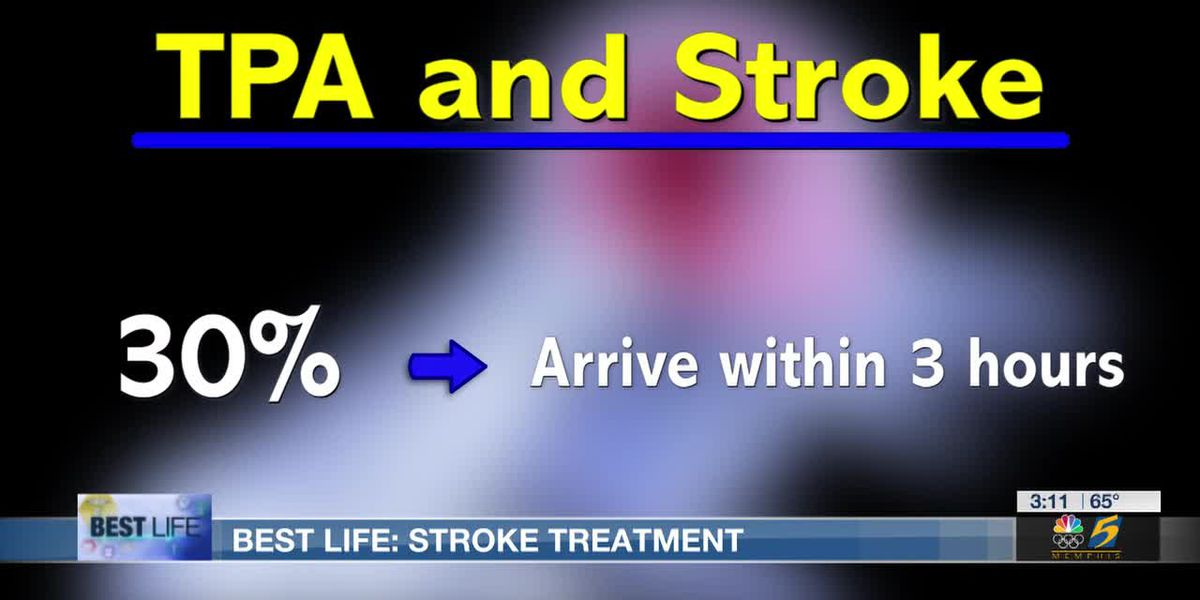 Best Life: Stroke treatment keeps brain cells alive