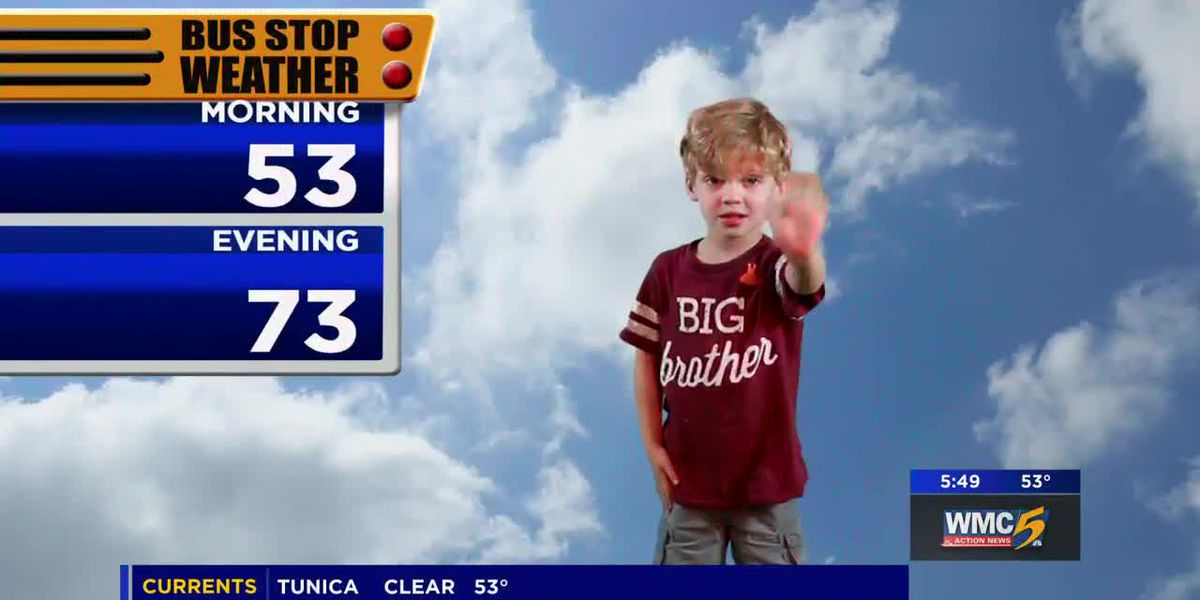 May 13, 2019 bus stop forecast