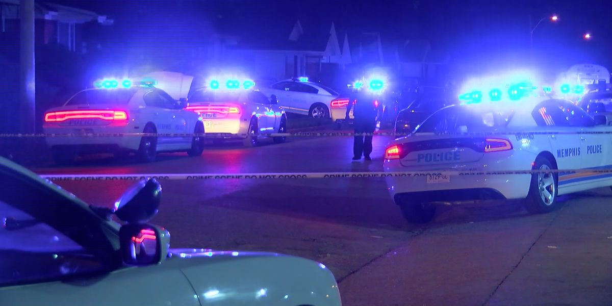 Lawmakers request TBI investigate all police shootings