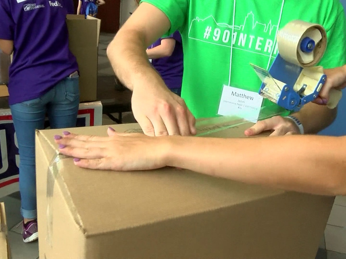 '901 Interns' help out across the city
