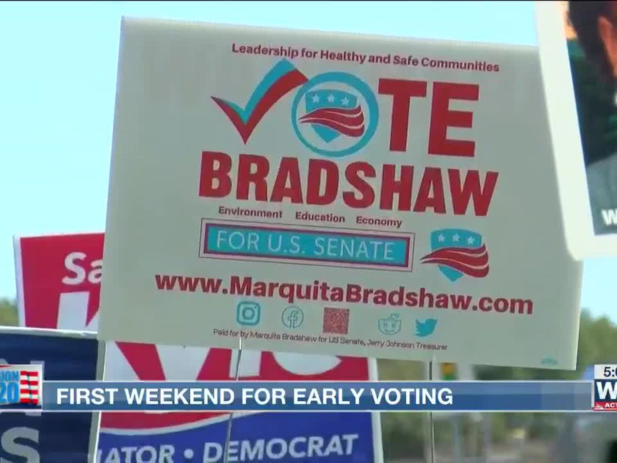 Steady stream of early voters Saturday in Shelby County