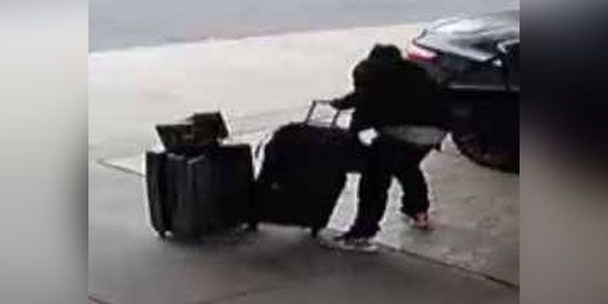 Man's luggage stolen before checking into hotel