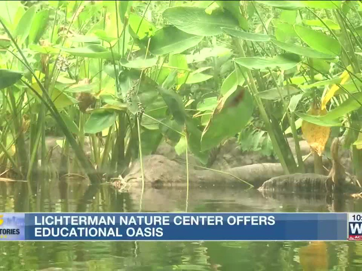 5 Star Stories: The Lichterman Nature Center, an urban oasis