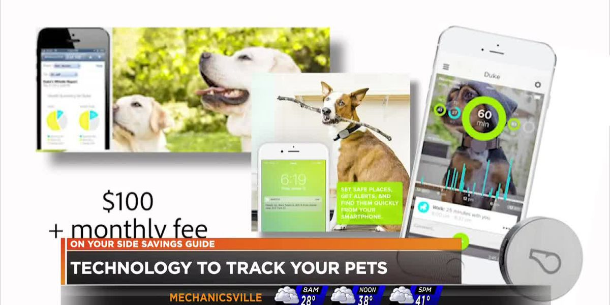 New technology makes finding missing pets easier