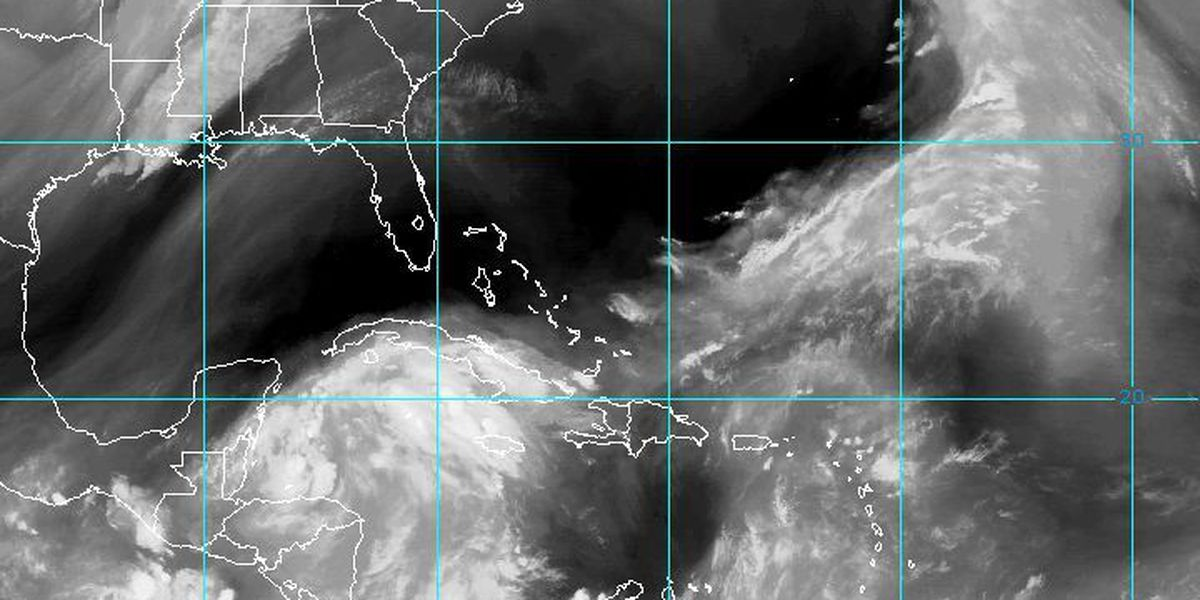Another tropical storm forming