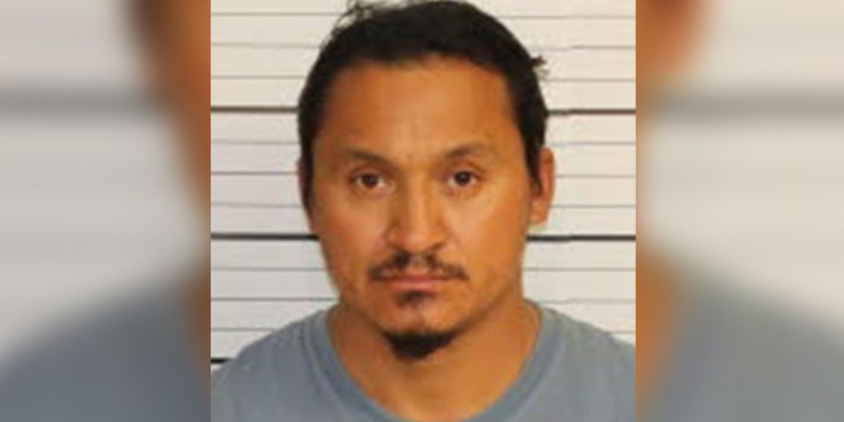 Memphis man arrested for cockfighting, more than 120 roosters and hens found