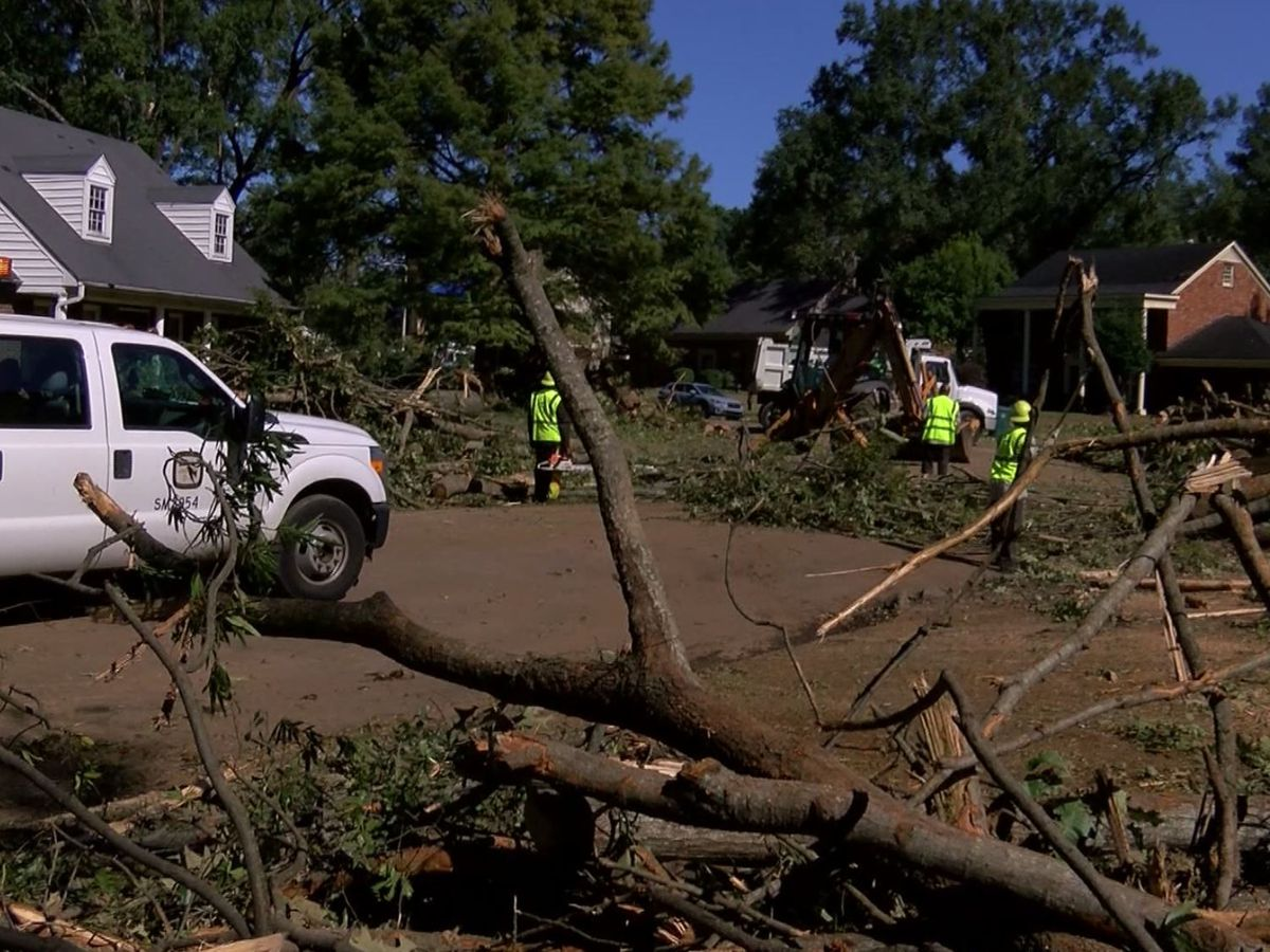 Cleanup continues in Balmoral neighborhood after Monday morning storms