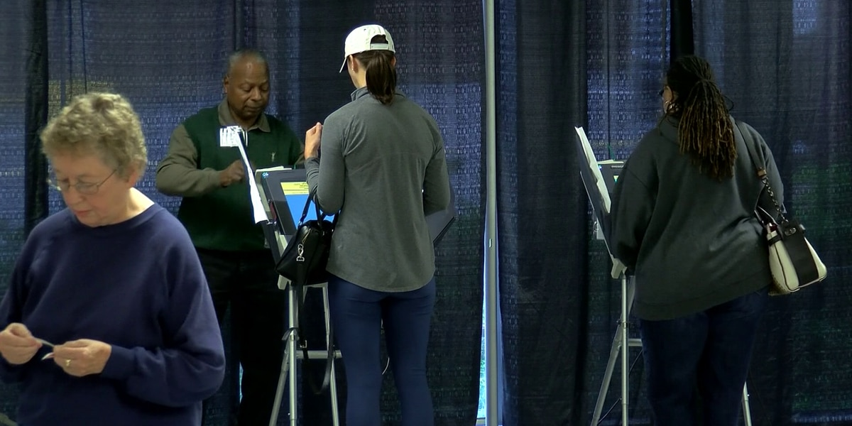Story lines emerge ahead of city council races in next week's Memphis municipal election