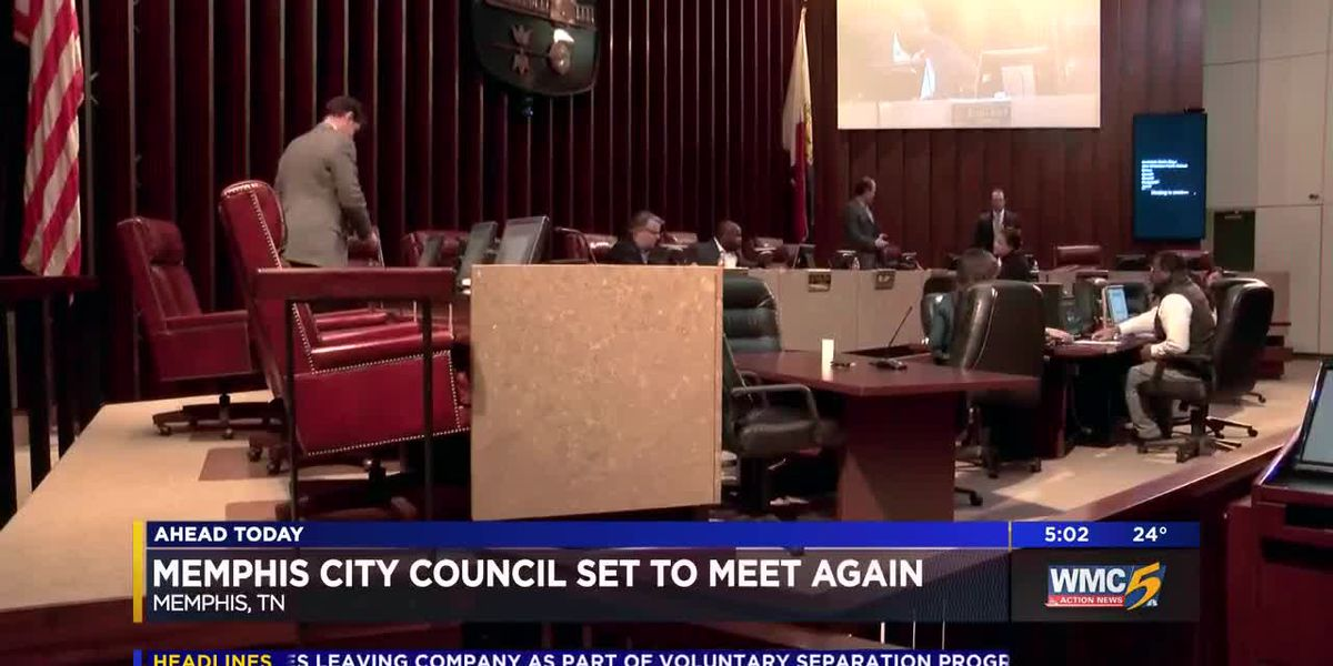 Council chair hopes members will end protest, fill vacancy