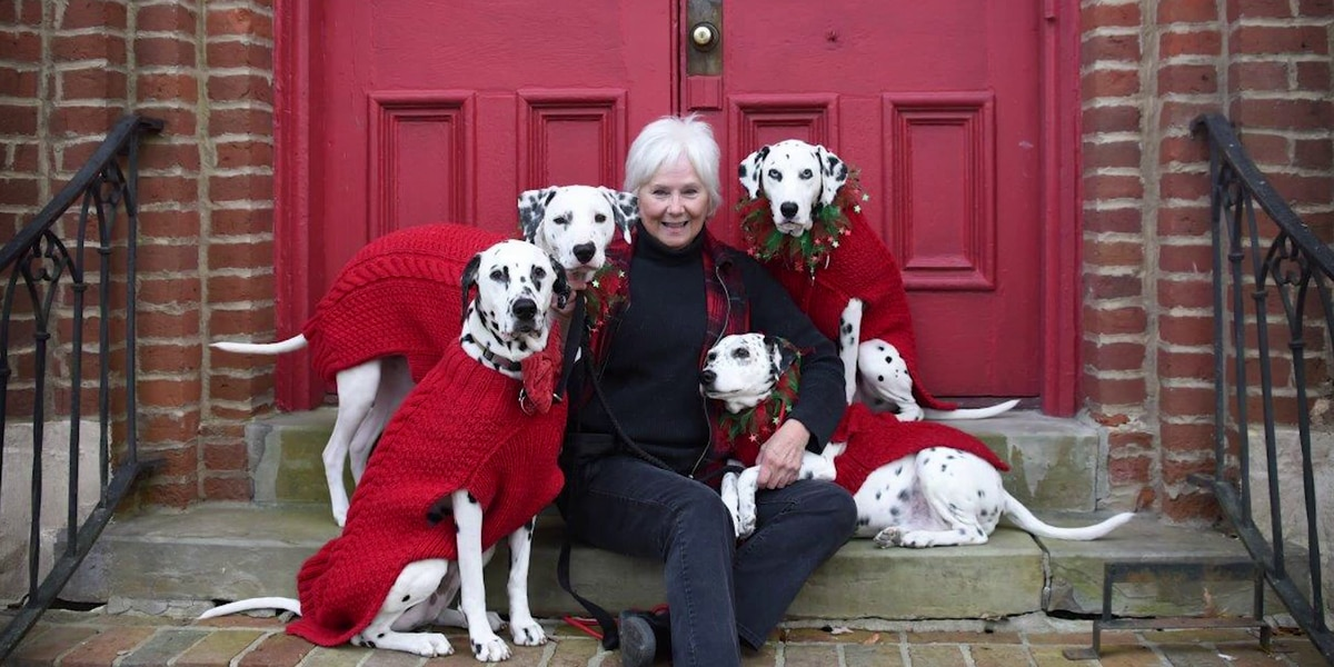 Mid-South Heroes: Woman rescues deaf dalmatians