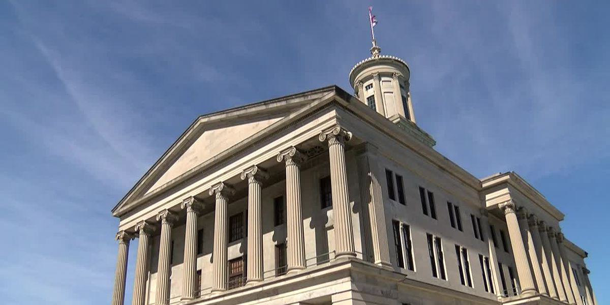 Tennessee candidates vying for U.S. Senate seat