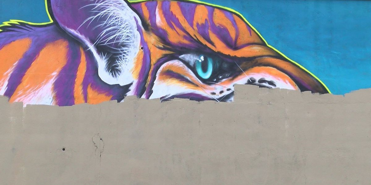 Tempers clash at meeting over Paint Memphis mural mix-up