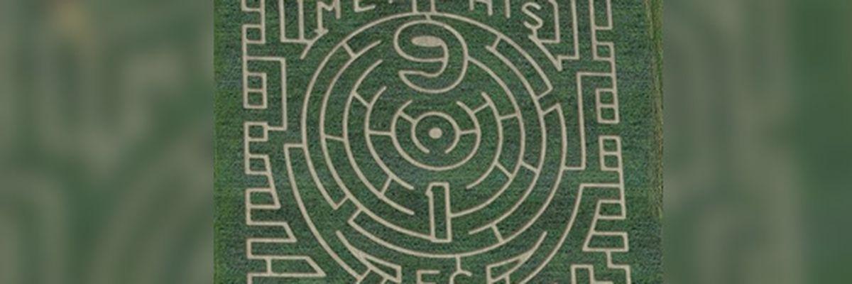 Mid-South maze features Memphis 901 FC logo