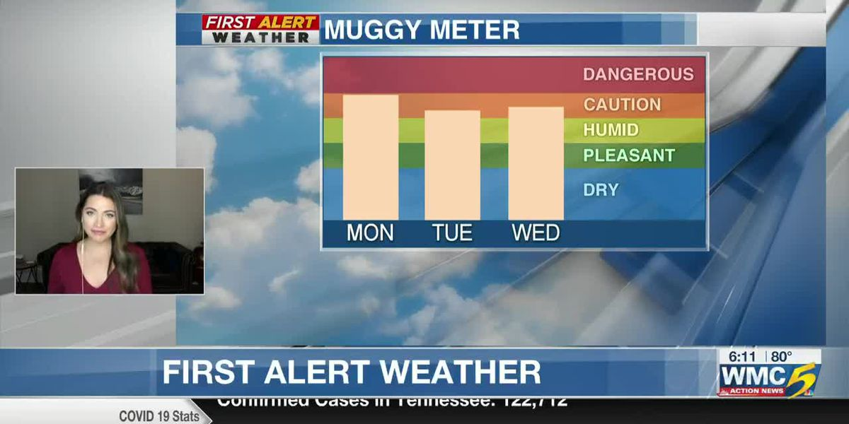 WMC - Morning, August 10 morning forecast