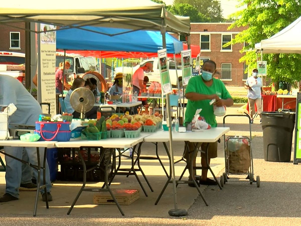 5 Star Stories: Miracles of the South Memphis Farmers Market