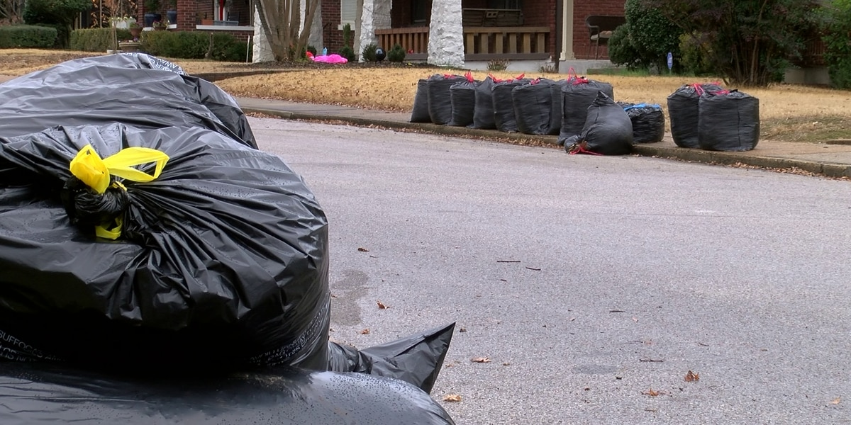 City of Memphis weeks behind on picking up bags of leaves