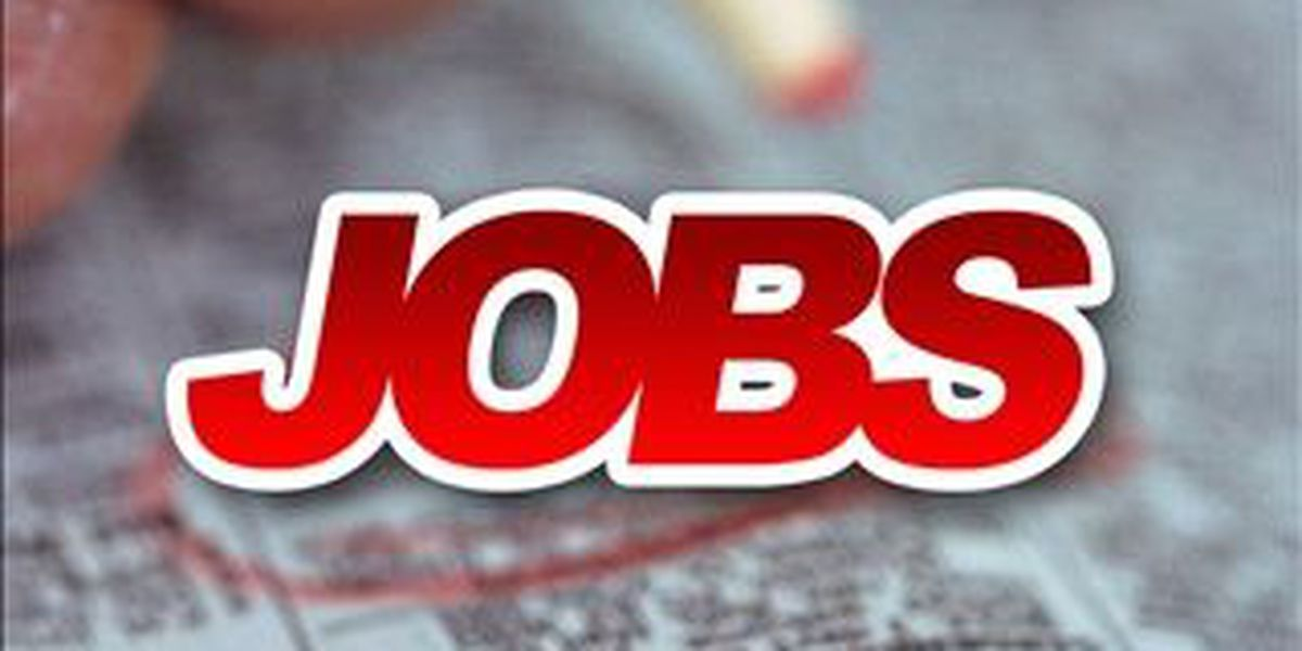 Applications now open for Shelby County government summer jobs