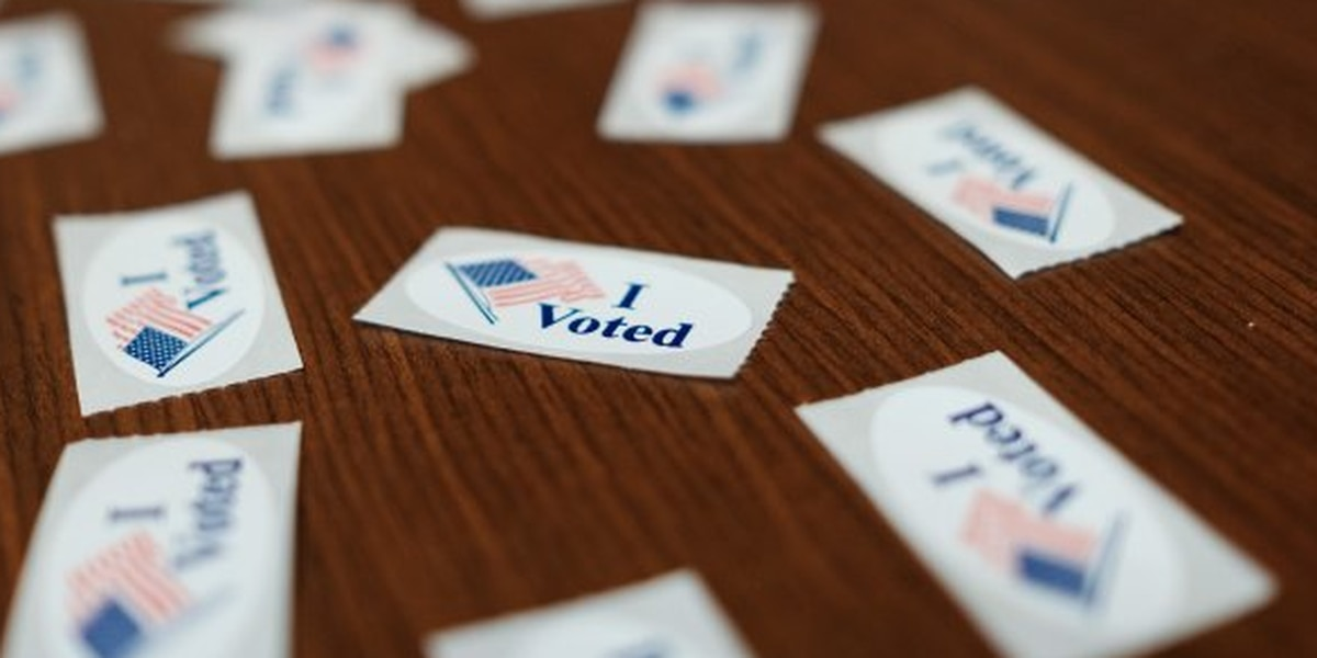 With no early voting, DeSoto County election officials warn of long lines expected on Election Day