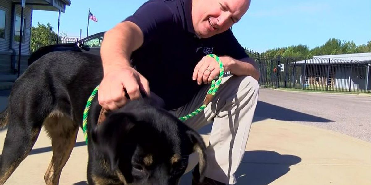 Law enforcement officers trained to deal with animal cruelty