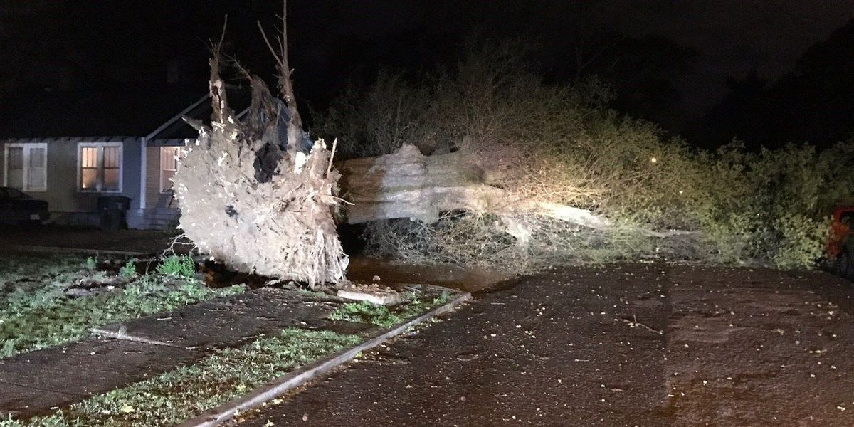 50 mph wind gusts cause damage in Mid-South