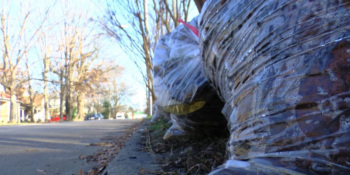 City says delay in yard debris collection a major priority, contract crews to be called in