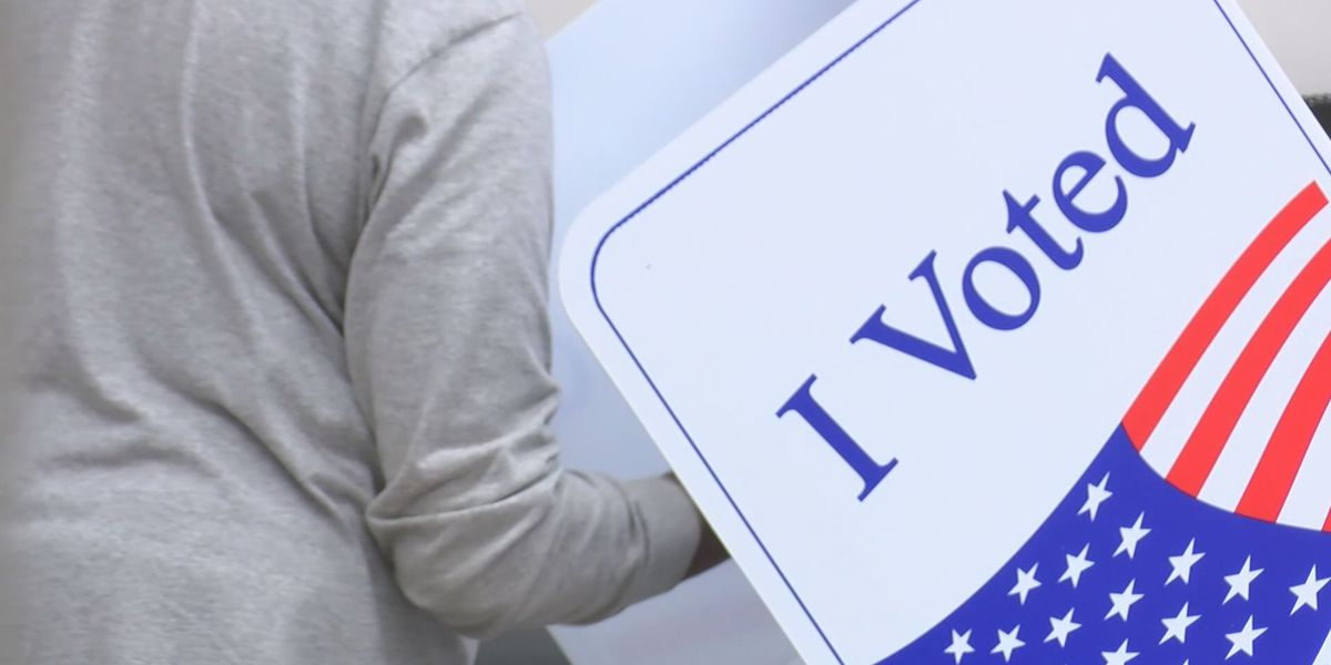 Voter Guide: Everything you need to know about Election Day in the Mid-South