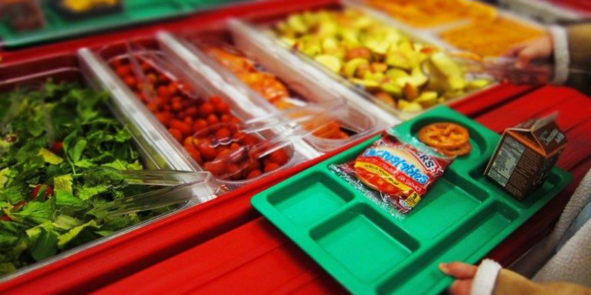 Applications open for free summer meals for kids
