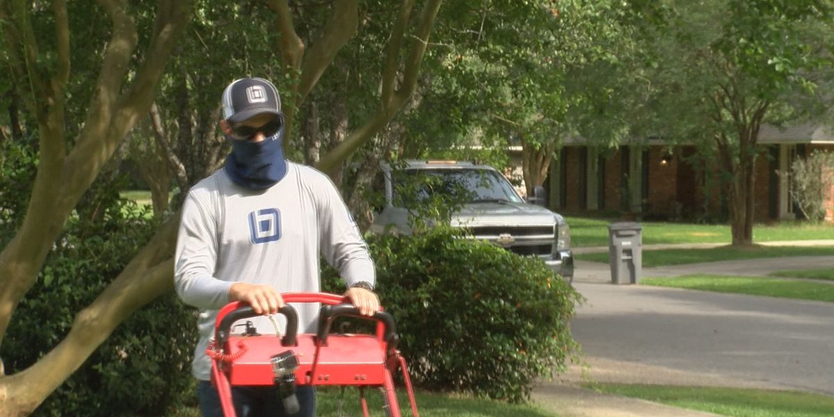 Bottom Line: Consumer Reports reveals spring cleaning products for your lawn
