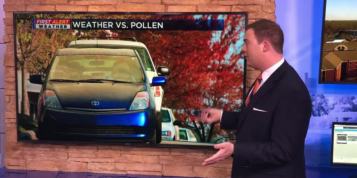 Weather vs. Pollen