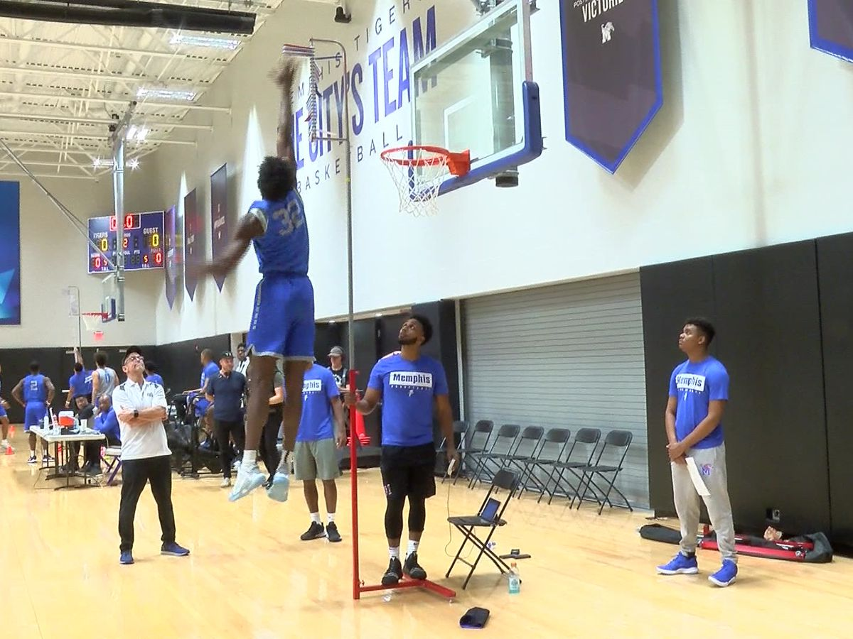 Tigers basketball hosts first pro day