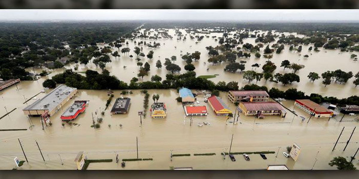 'Memphis Navy' helps in Harvey search, rescue efforts