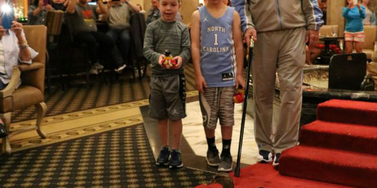 UNC Coach Williams marches Peabody Ducks as honorary Duckmaster