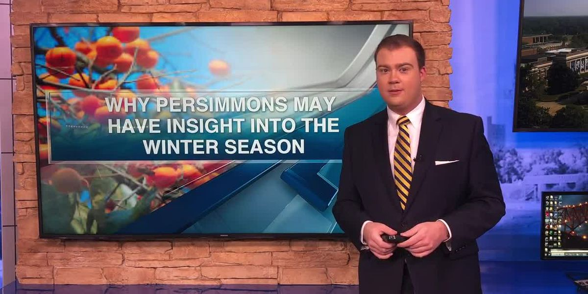 Can a fruit really predict the winter weather?