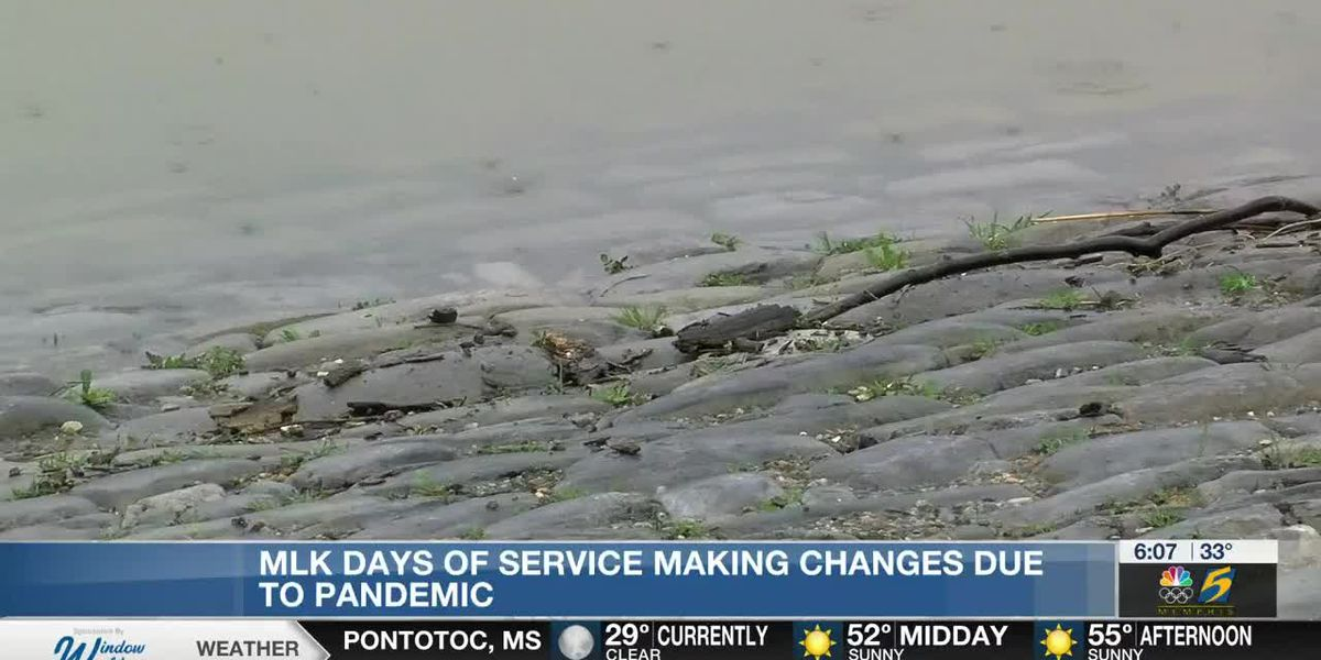 MLK Days of Service making changes due to pandemic