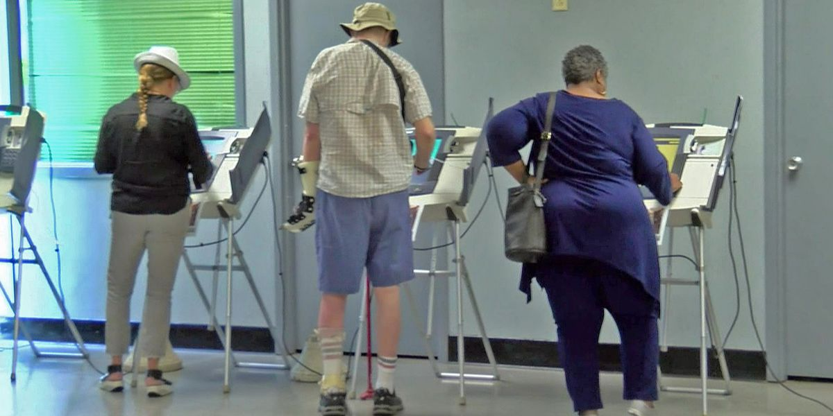 Decision 2018: Voters to weigh in on term limits for city officials